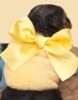 00 Sweater *Big yellow Bow* Teacup XXXS: past 21-25 cm...Maat XXS: past 26-30 cm